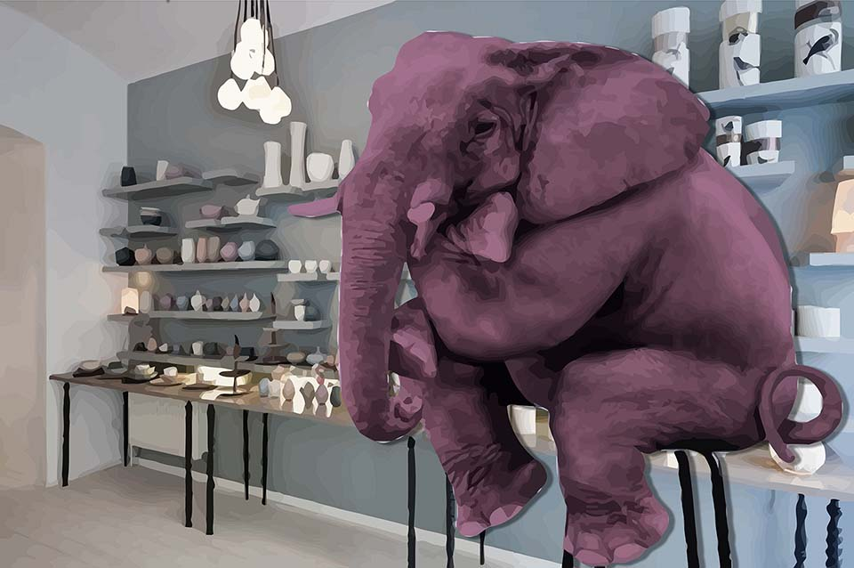 Elephant in a Porcelain Store